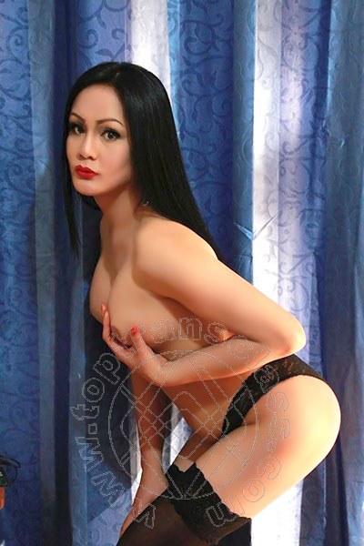 Angelika Asiatica  REGGIO EMILIA 3245611031